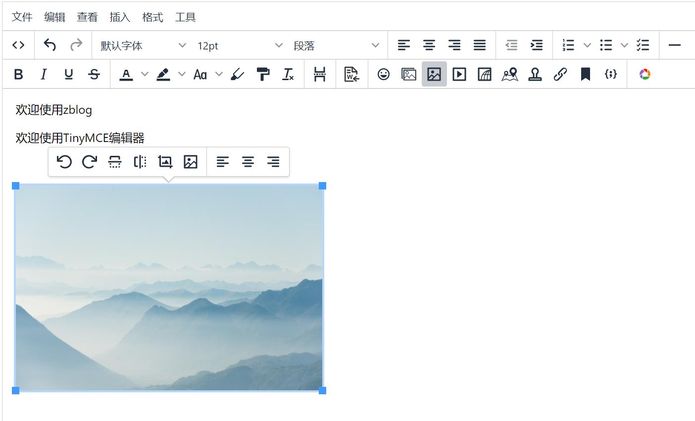 Zblog TinyMCE 富文本编辑器