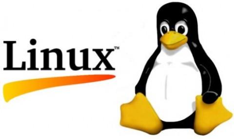 Linux任务计划crontab不执行问题排查过程